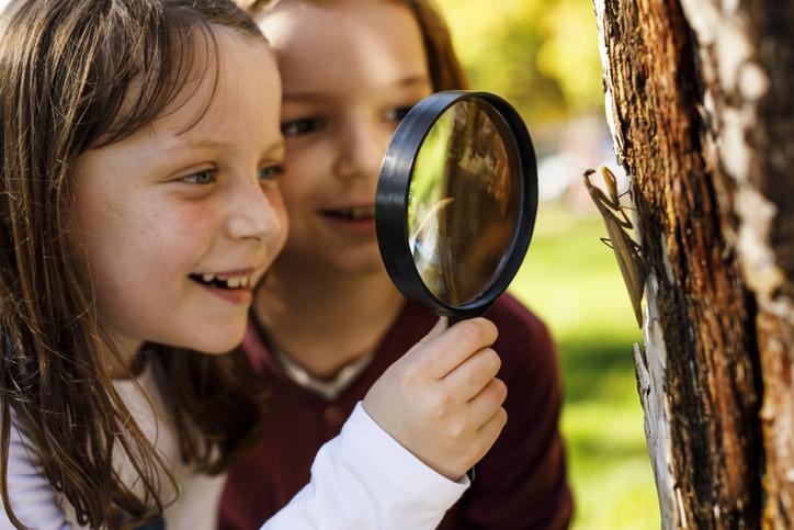 Confira 5 benefícios do contato com a natureza para a saúde!